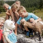 PH_UNT_SB_Familiennest-Sommer-2014-Ziege-Zenzi-C-Tiroler-Familiennester-5