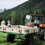 kinderhotel_tirol_naturerlebnis_ernte_traktor_fahren
