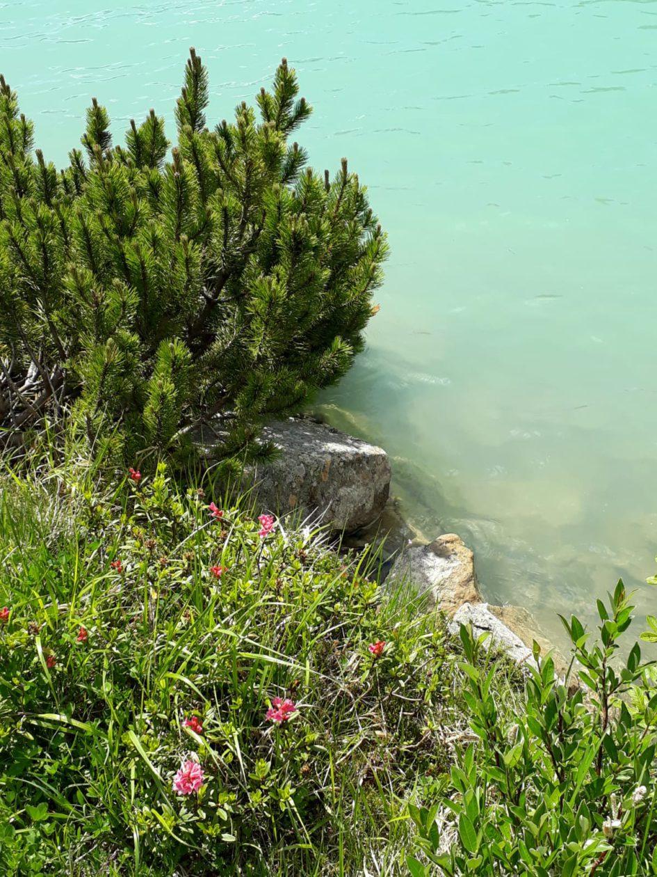 Lac Rifflsee Pitztal