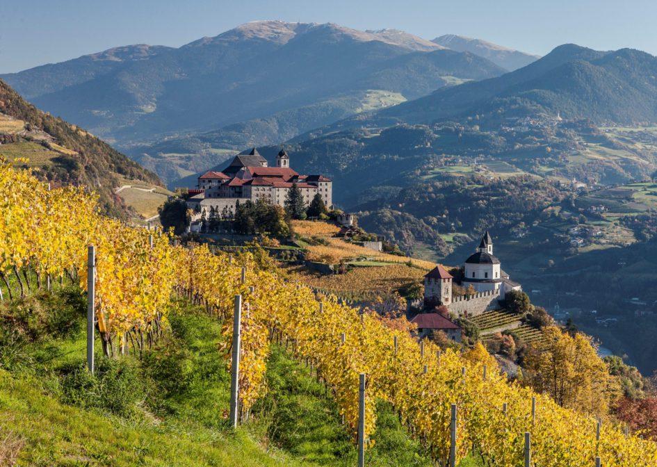 Vignobles dans la vallée Eisacktal, Tyrol du Sud © IDM Südtirol - Florian Andergassen